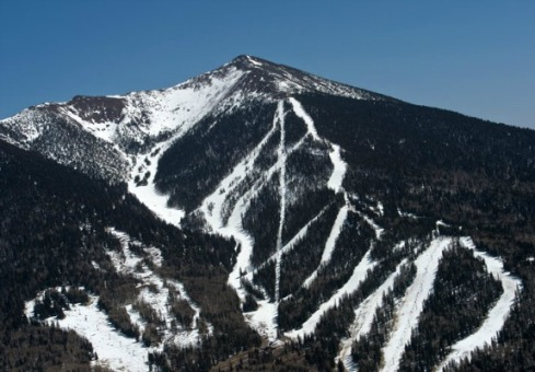This mountainside—part of the Arizona Snowbowl resort—bears clear-cut scars typical of mountain ski slopes. Photo courtesy of Robin Silver Photography.