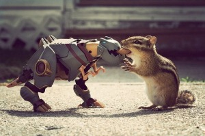 squirrel-vs-robot1