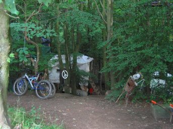 A tree village in an ancient woodland, Bilston Glen remains protected and a home to many.