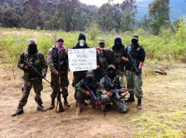 Forest defenders from Cheran, Michoacan are in solidarity with the Idle No More movement from Canada.