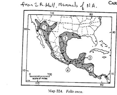 An earlier map of the historic occurrence of jaguars by the renowned mammologist E. Raymond Hall.  Dr. Hall had demarcated 5 subspecies, thus the numbers on the map. Note: the overall area of occurrence for jaguar in Arizona and New Mexico is greater than the area in the nearby state of Sonora, Mexico.