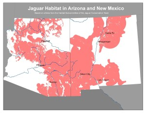 Potential habitat for jaguars in Arizona and New Mexico, as determined by the Habitat Subcommittee of the Jaguar Conservation Team (2006). This map is based on records of past jaguar occurrence and habitat associations, surface water availability, absence of heavy agricultural or urban development, and other factors.