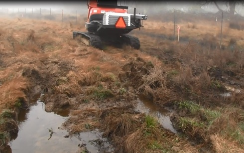 Excavator tracks flat jurisdictional wetlands