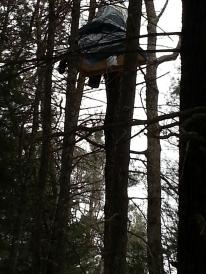 Tree sit against Tennessee pipeline in PA