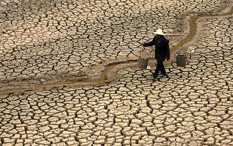 chinaDrought_1604505c