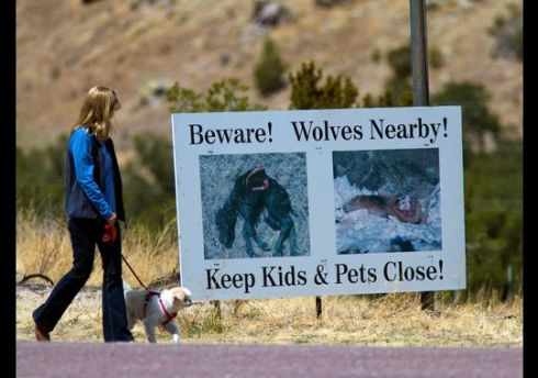 A sign warns people of the danger of wolves in Datil, N.M.(Photo: Michael Chow, The Arizona Republic)
