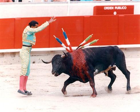 cruel-bull-fight