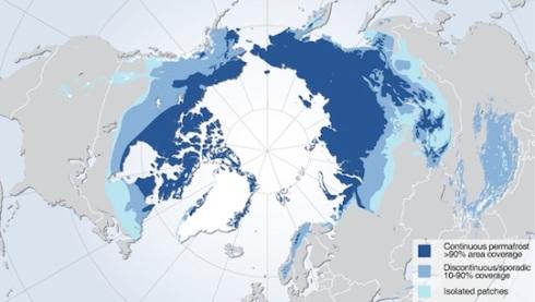arcticbeast