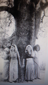 http://en.wikipedia.org/wiki/Chipko_movement
