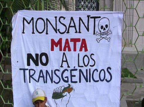 A banner at last week's Caracas anti-Monsanto protest (Aporrea tvi)