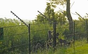 kruger-fence