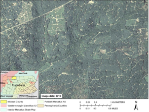 A photograph from a recent report issued by the U.S. Geological Survey illustrates the degree of damage done to forest land in Pennsylvania by natural gas drilling activity. The report found that natural gas driling activity is a primary force behind the destruction of Pennsylvania forest land.