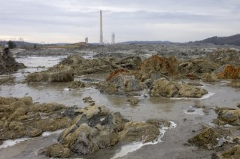 In a Dec. 23, 2008, photograph, the stacks of TVA's Kingston Fossil Plant in Roane County stand over 5.4 million cubic yards of ash sludge after the failure of a storage cell. (J. Miles Cary/News Sentinel)